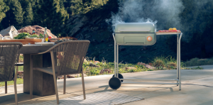 Read more about the article Best Gas Grills